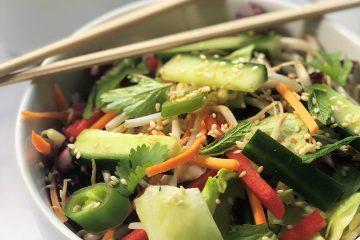 Asiatischer-Salat-Sesam-Rezept-Asiasalat-knackig-Tahini-Rohkost-vegan-paleo-lowcarb-keto-ketogen-lecker-Paprika-Karotte-Koriander-kalorienarm